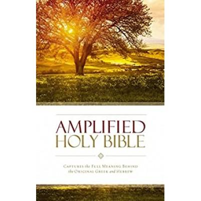 Amplified Large Print B/L Burg