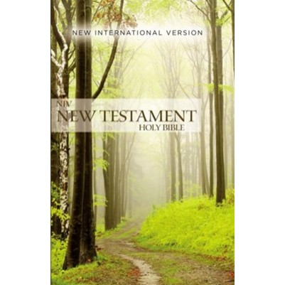 NIV New Testament Outreach