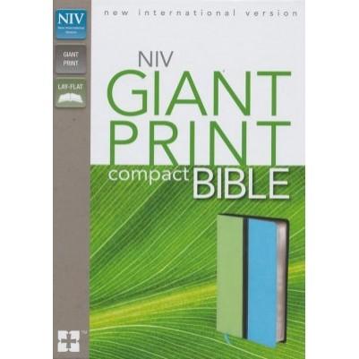 NIV Compact Giant Print Melon Green/Turquoise