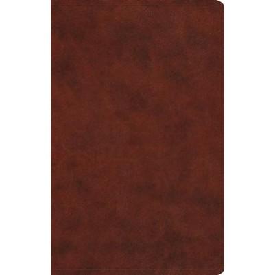 ESV Large Print Value Thinline Chestnut Black Letter Ed