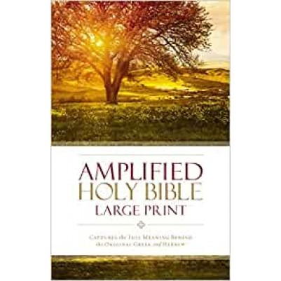Amplified Large Print Hard Cover