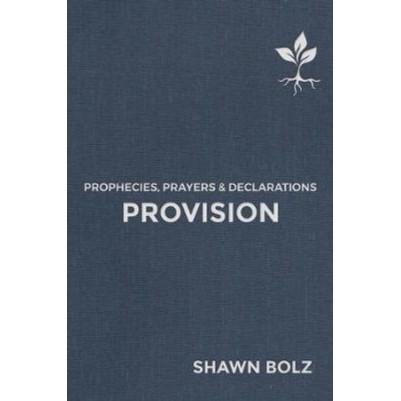 Provision, Volume 2: Prophecies, Prayers & Declarations