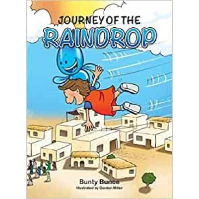 Journey of the Raindrop