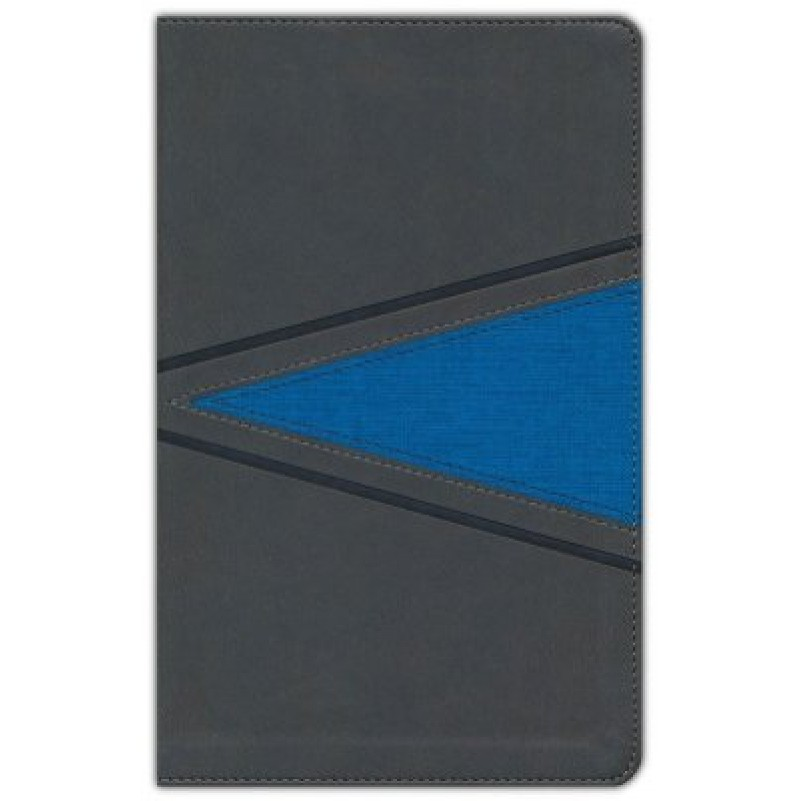 NIV Boys Gray/Blue Imitation Leather