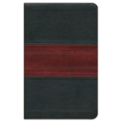 ESV Large Print Personal Forest/Tan Trail Design Cover