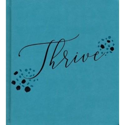NLT Thrive Creative Journaling Devotional Teal